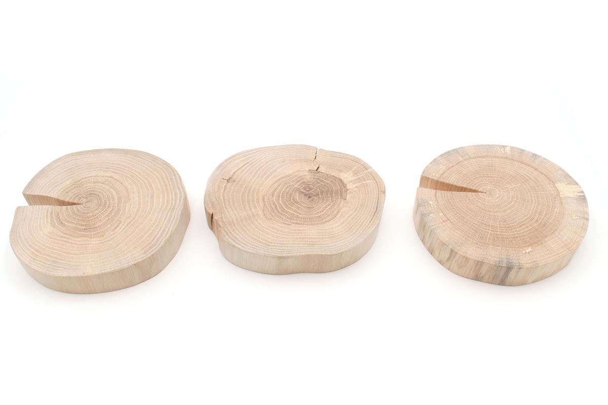 Drei geschliffene Holzscheiben ohne Rinde liegen auf weißem Hintergrund