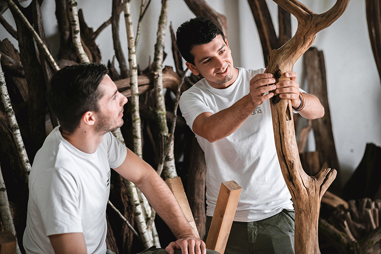 natürliches Fallholz bei der Qualitätsprüfung von zwei Schreinern in der Werkstatt