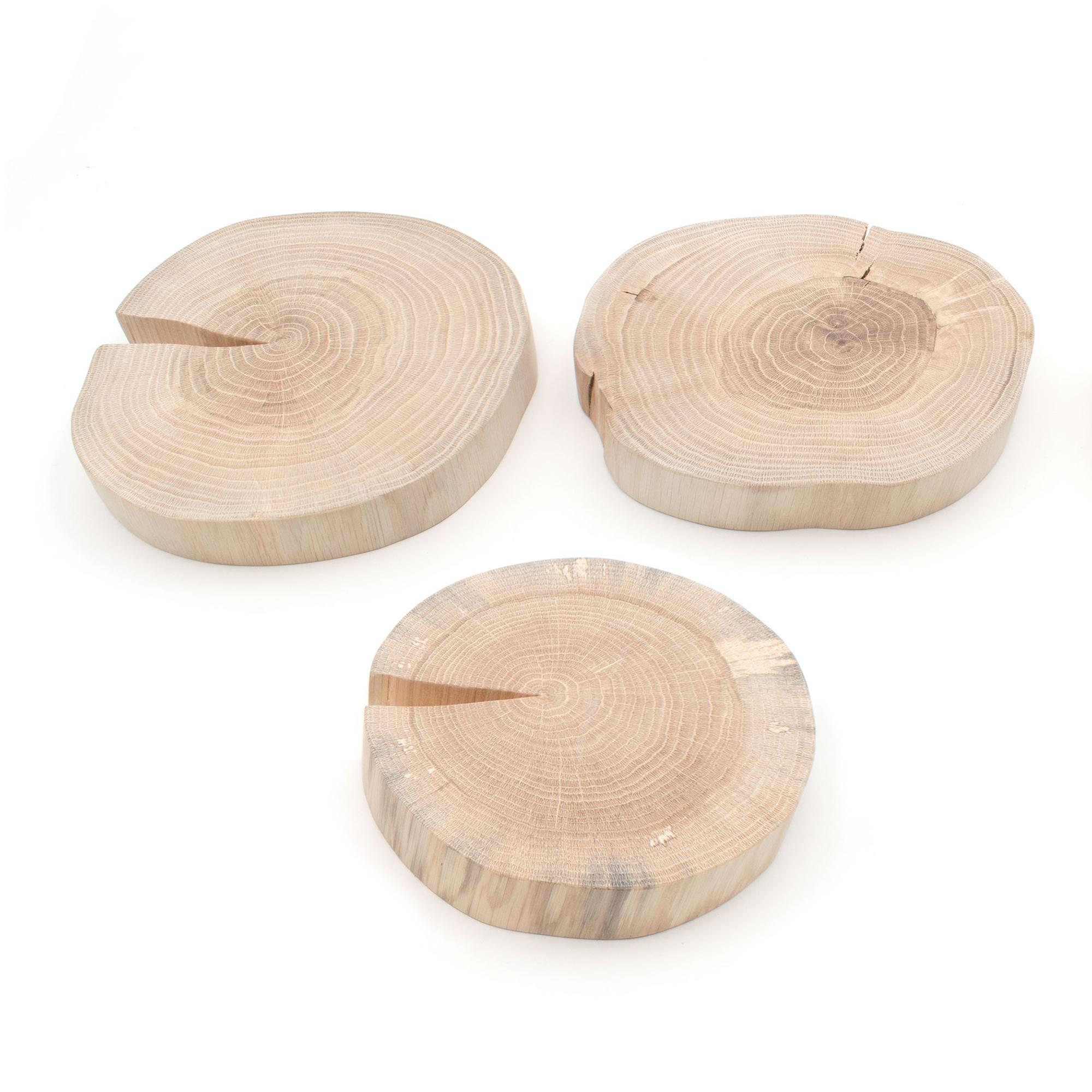 Drei Baumscheiben zur Auswahl aus Eiche-Holz ohne Rinde, liegend